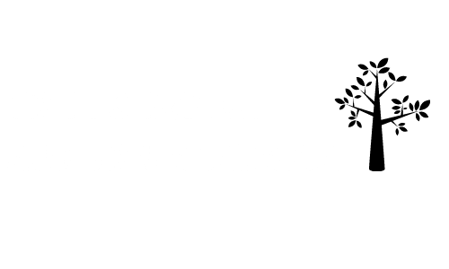 Tree Service Auburn Alabama