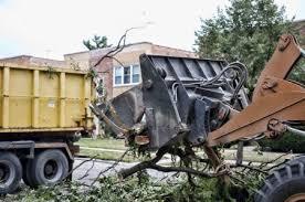 bucket dumping limbs into a dump truck